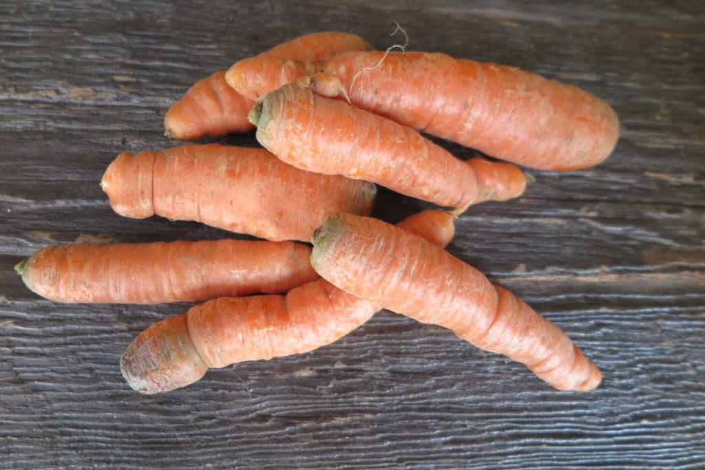 older carrots