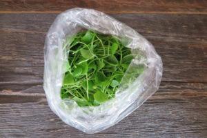 bag of radish microgreens