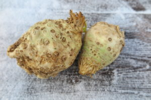 two celeriac roots