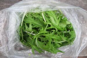 bag of mizuna