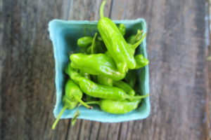 produce basket of shishito peppers
