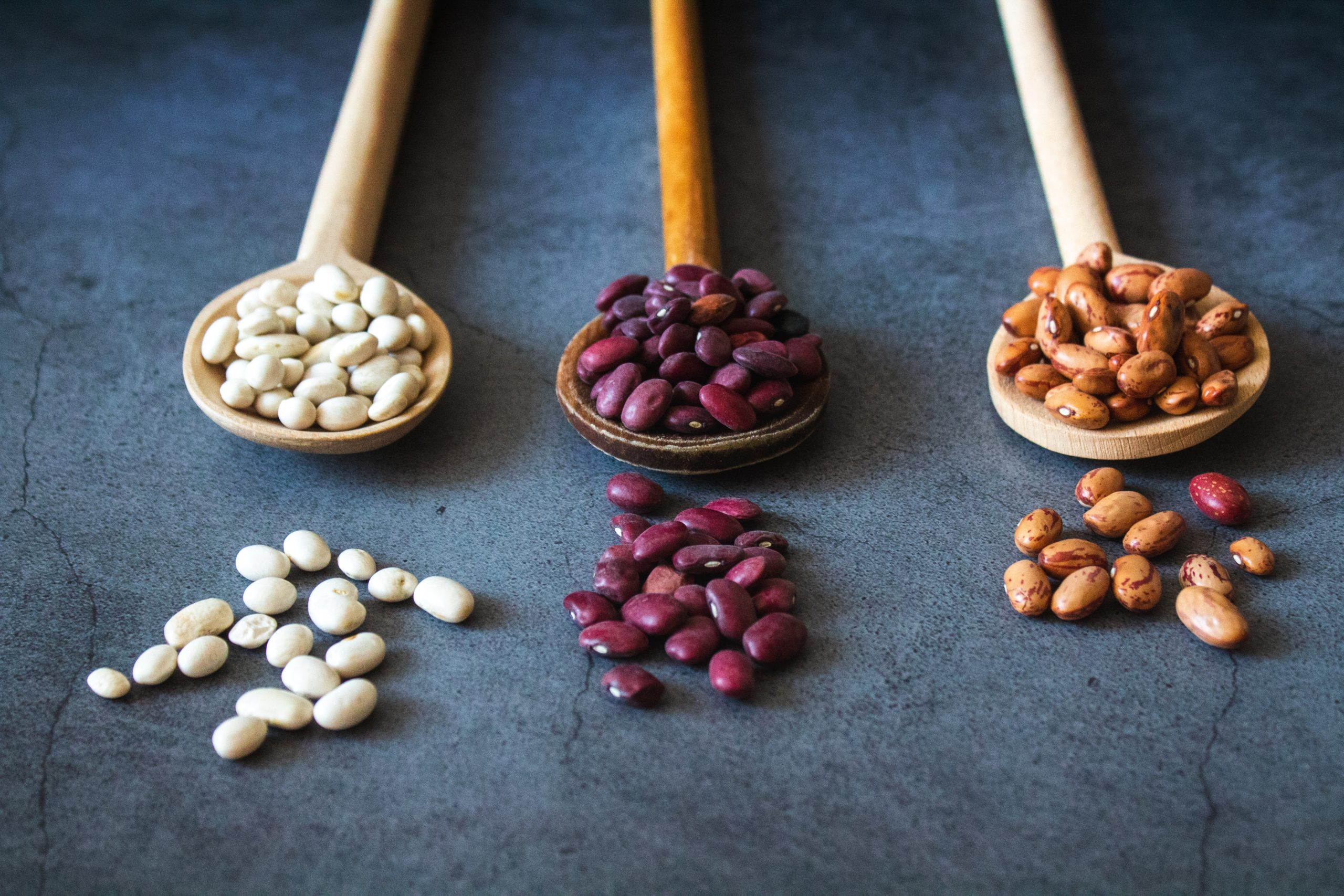 Thee wooden spoons each with dry beans in the bowl - white, black, and pinto beans